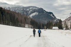 Um par anda em um vale coberto de neve nas montanhas imagens de stock royalty free