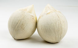 Um par coco novo no fundo branco Fotografia de Stock Royalty Free