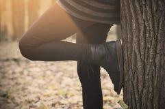 Um par das botas de couro na floresta Imagem de Stock