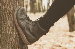 Um par das botas de couro na floresta Fotos de Stock