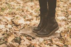 Um par das botas de couro na floresta Imagem de Stock Royalty Free