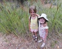 Um par de abraço das irmãs entre os Cattails imagens de stock