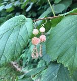 Um par de brincos cor-de-rosa Fotografia de Stock