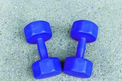 Um par de dumbel azul no assoalho Imagens de Stock