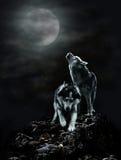 Um par de lobos em uma noite escura e na lua Foto de Stock