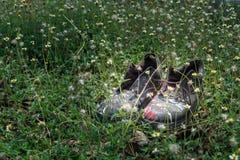 Um par de sapatas velhas em um canteiro de flores Fotografia de Stock Royalty Free