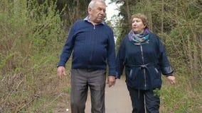 Um par idoso bonito, andando no parque, falando amavelmente Bom humor, vida positiva Amor, mãos da posse video estoque