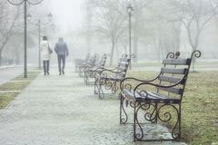 Um par jovens que andam no parque na mola adiantada O tempo ? nevoento imagens de stock