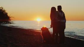 Um par novo com um soluço admirará o por do sol bonito sobre o Lago Ontário filme