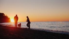 Um par novo está jogando com um cão na costa do lago No por do sol, vídeo de movimento lento video estoque