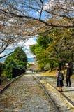 Um par olha sobre com curiosidade no declive de Keage em Kyoto, Japão Imagens de Stock Royalty Free