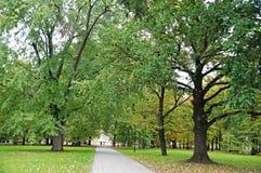 Um par povos andam em um parque do outono ao longo da aleia Fotos de Stock Royalty Free