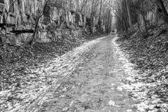 Um par que anda Bruce Trail, trajeto do inverno com parede da rocha sobre fotos de stock