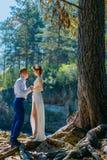 Um par recém-casados estão na natureza e no olhar selvagens em se No fundo, em uma árvore grande e em raizes de madeira enorme foto de stock royalty free