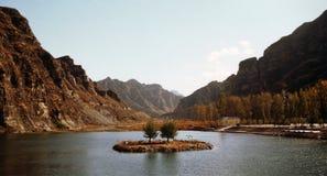 Um par árvores no lago Foto de Stock Royalty Free