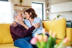 Um par superior afetuoso no amor que senta-se no sof? dentro em casa imagens de stock royalty free