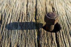 Um parafuso oxidado Foto de Stock