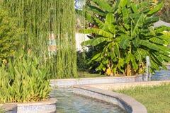 Um parque bonito com fontes, árvores, flores e palmeiras em Kemer, Turquia Grama verde Fotografia de Stock