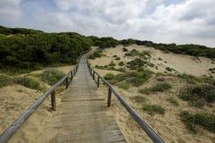 Um passeio à beira mar de madeira através das dunas que conduzem à praia do EL Portil, Huelva, a Andaluzia, Espanha fotografia de stock royalty free