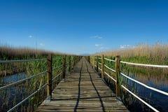 Um passeio à beira mar de madeira protegido estende através de uns animais selvagens sanctuar foto de stock