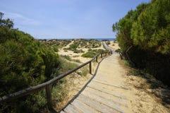 Um passeio ? beira mar de madeira atrav?s das dunas que conduzem ? praia do EL Portil, Huelva, a Andaluzia, Espanha imagens de stock royalty free
