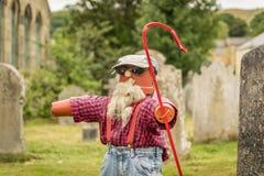 Um pastor feito dos potenciômetros da planta foto de stock