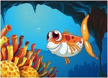 Um peixe de sorriso sob o mar dentro da caverna Imagem de Stock