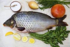 Um peixe vivo da grande carpa fresca que encontra-se na no fundo de papel com uma faca e fatias de limão e com aneto de sal Imagens de Stock Royalty Free