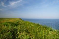 Um penhasco selvagem perto do mar é coberto de vegetação com a grama verde gostoso Foto de Stock Royalty Free