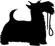 Cão e trela de Scotty ilustração royalty free
