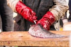 Um pescador Cutting um peixe Fotografia de Stock Royalty Free