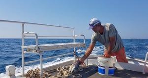Um pescador libanês imagem de stock