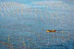 Um pescador que atravessa a zona intertidal litoral de Xiapu imagens de stock