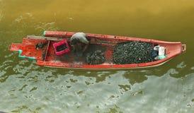 Um pescador que recolhe shell em um barco imagens de stock