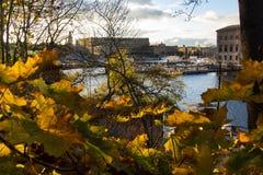 Um pico da espreitadela com as cores do outono imagem de stock royalty free