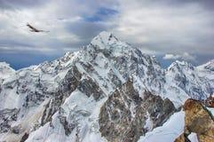 Um pico de montanha rochosa enorme da neve e do gelo e uma águia fotografia de stock