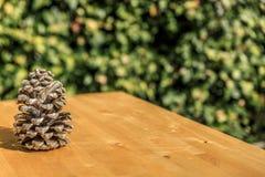 Um pinecone em uma tabela de madeira Foto de Stock