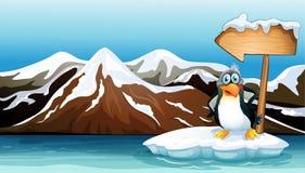 Um pinguim acima do iceberg com um arrowboard Foto de Stock