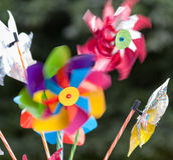 Um pinwheel colorido Foto de Stock Royalty Free