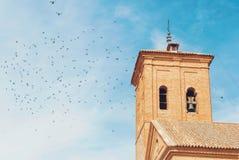 Um planty dos pombos que voam sobre o telhado de uma torre de sino de um a Imagem de Stock