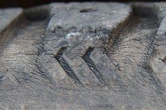 Um pneu velho foto de stock