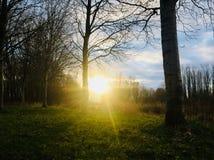 Um por do sol em Sommelsdijk foto de stock royalty free
