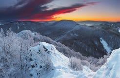 Um por do sol gelado fotografia de stock