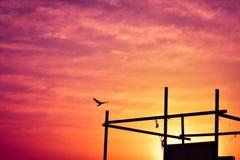 Um por do sol surpreendente Imagem de Stock