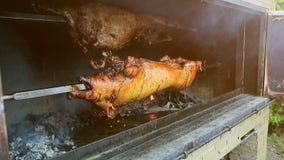 Um porco é cozido nos carvões, girando vídeos de arquivo