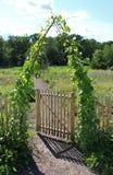 Um portal verde Fotografia de Stock
