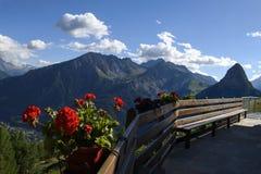 Um potenciômetro de flor suspendido na frente das montanhas fotografia de stock