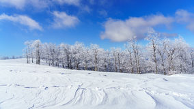 Um prado nevado foto de stock