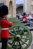 Um protetor antes dos canhões nos arsenais reais na torre de Londres Foto de Stock