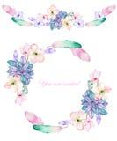 Um quadro do círculo, uma grinalda e uma beira do quadro com as flores da aquarela, as penas e as plantas carnudas, convite do ca Foto de Stock
